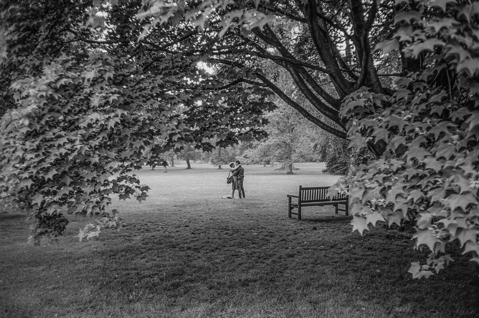 Kew gardens, Londres, juin 1984.
