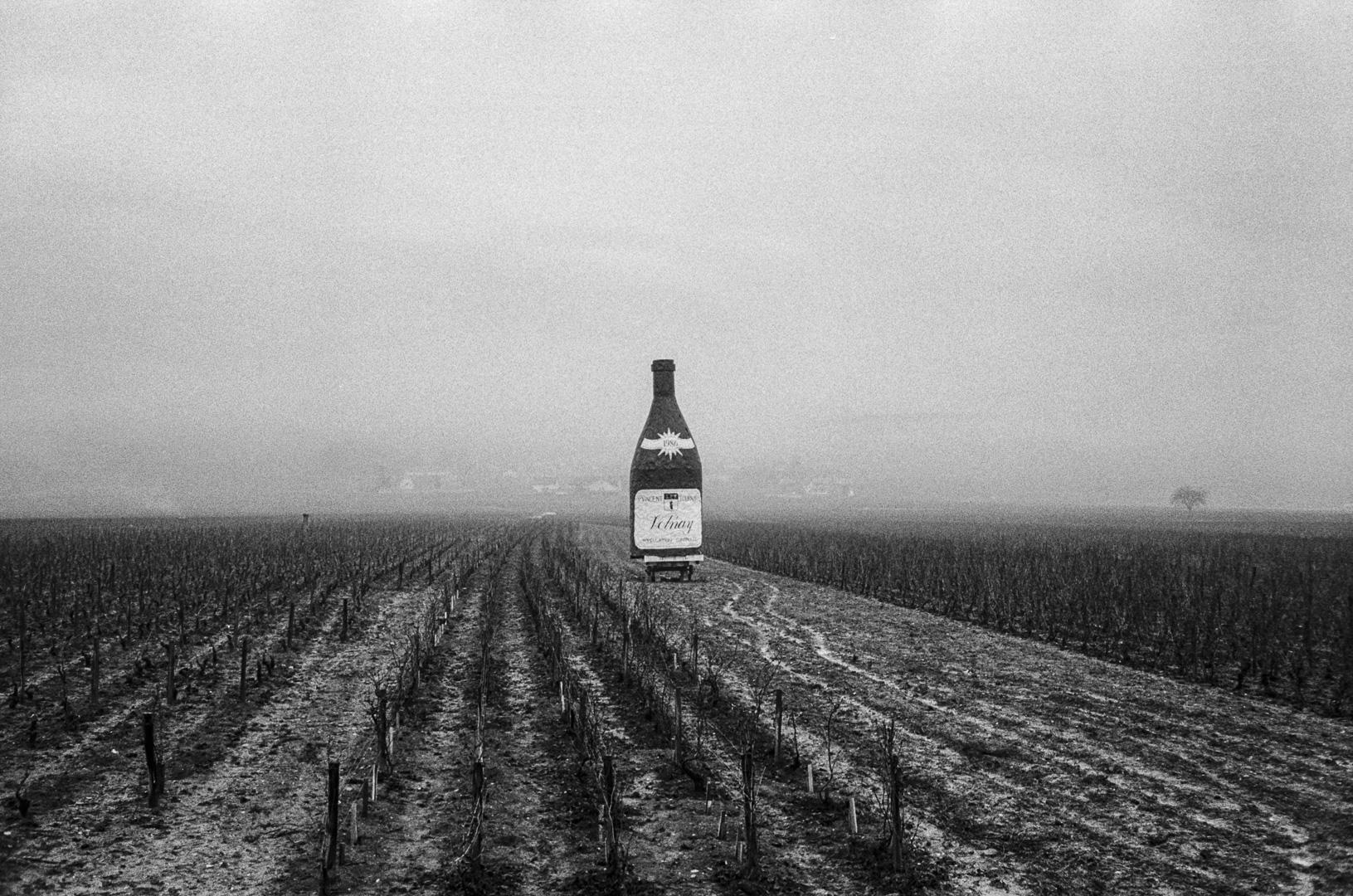 Volnay, Bourgogne, 1985.
