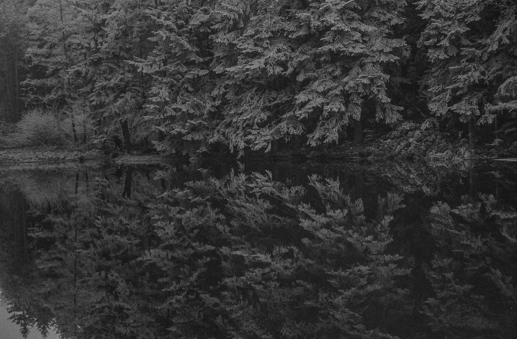 Paysage, 1983.