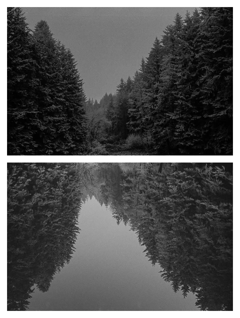 Paysage (et son reflet), 1983.